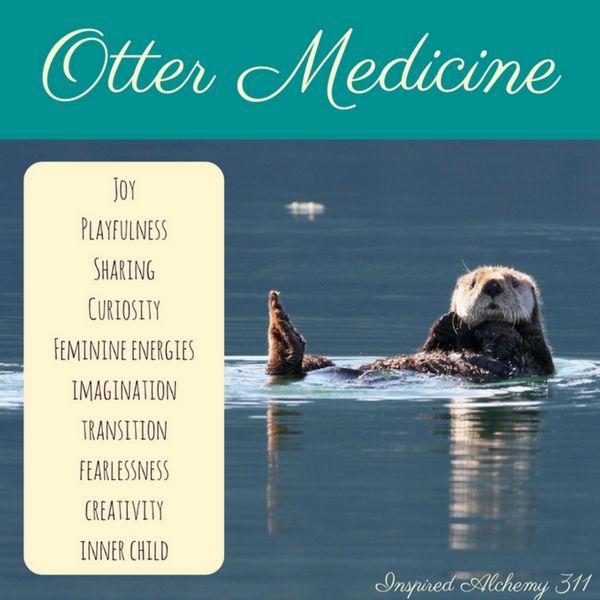 Otter Medicine
