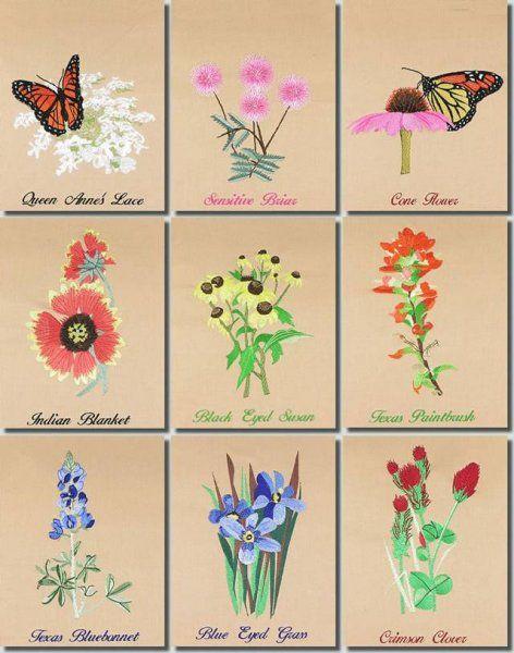e92a5e7307ec5 BFC0939 Texas Wildflowers I Wildflower Drawing, Wildflower Tattoo,  Bluebonnet Tattoo, Texas Tattoos,