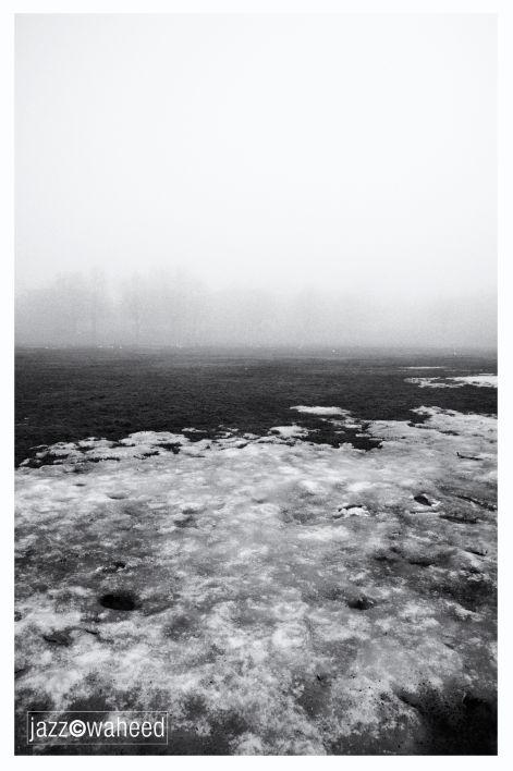 Foggy Montreal #7