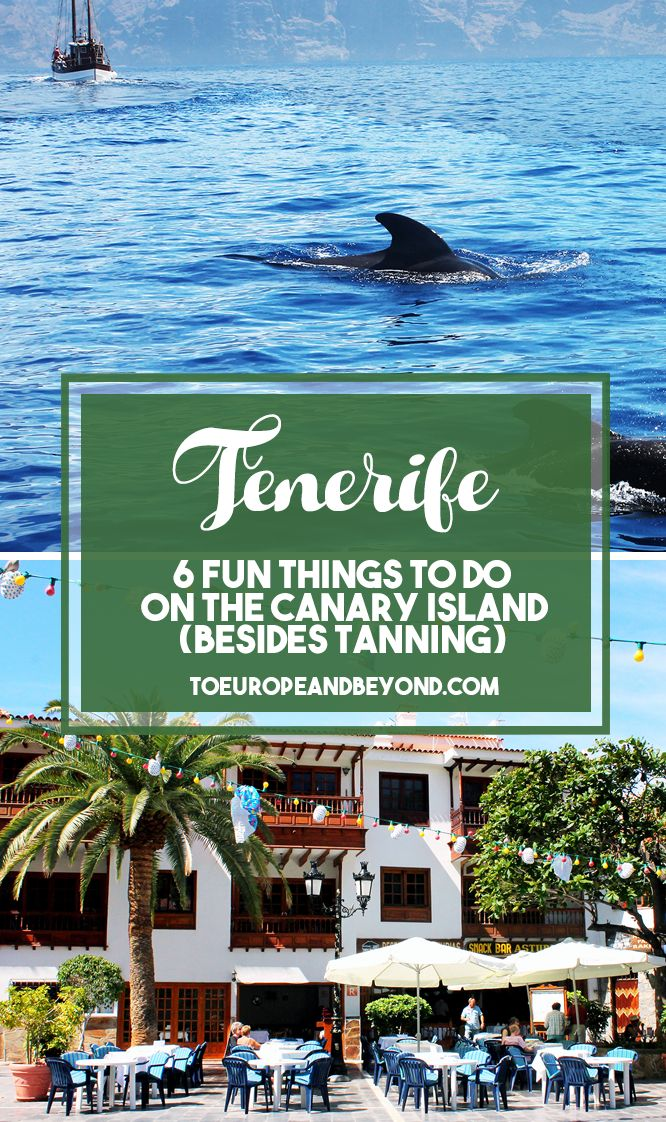 There is a surprisingly large amount of things to do on the island, from diving to hiking and museum hopping. http://toeuropeandbeyond.com/things-to-do-in-tenerife-besides-tanning/ #travel #Tenerife #Spain