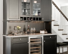 This is cool for butlers pantry area or even a Master Bedroom kitchenette...stylish