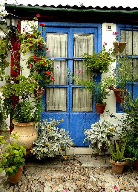 Give me a patio or a backdoor with a courtyard garden....Don't forget the door step for containers.  More is ...more!