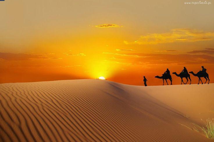 Zachód, Słońca, Pustynia, Karawana