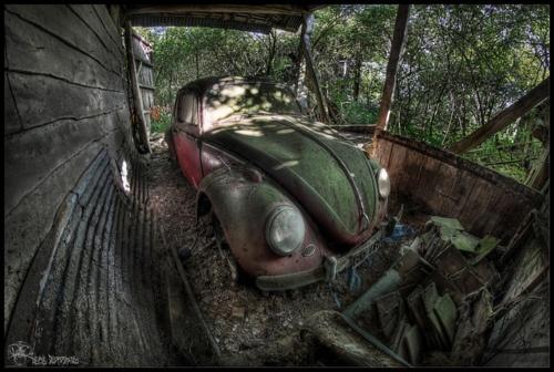 Bug outlived its garage...