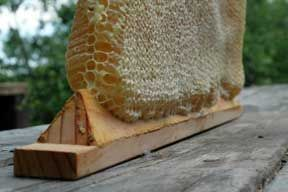 triangle top bars for more surface area to attach honey comb therefore less chance of it breaking off