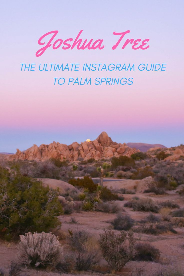 A Complete Palm Springs Travel Guide Instagram Guide Insurance