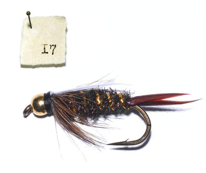 fly fishing stonfocom - 655×551