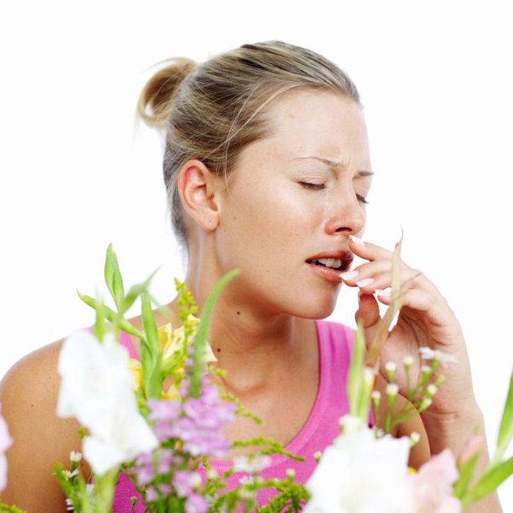Allergie au pollen : comment identifier le rhume des foins ou autrement dit l allergie au pollen