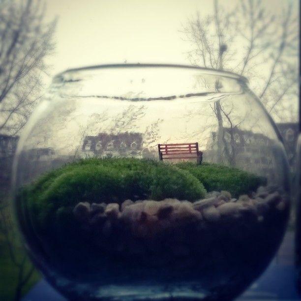 #moss #moha #minikert #tinyworld #makett #makette #diorama