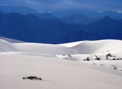 Dunas de Tatón-(Tinogasta) Catamarca. Con una altura promedio superior a los 2000 metros, figuran entre las más altas de América del Sur.