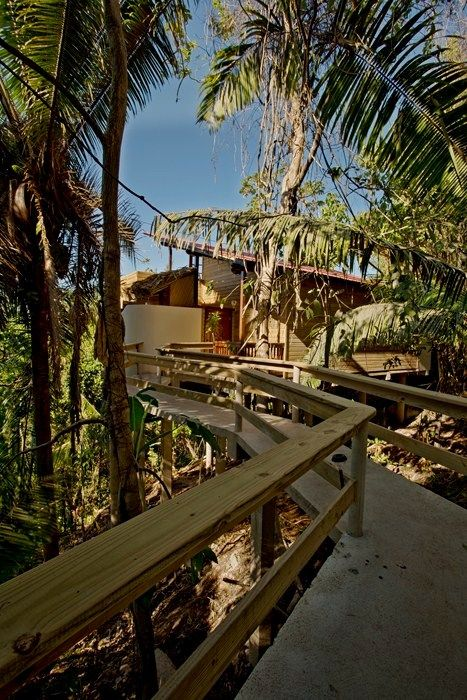 Belize Accommodations Gallery – Caves Branch Jungle Lodge