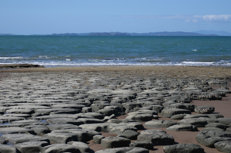 "Stanmore Bay Beach, Whangaparaoa ""Bay of Whales"" Peninsula, North Island, New Zealand"