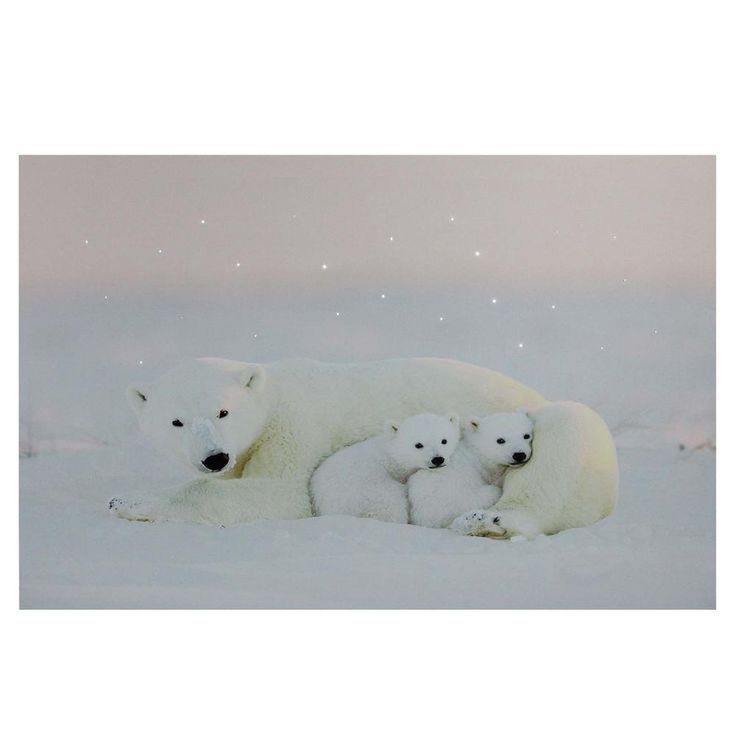 Northlight 23.5 in. x 15.5 in. Fiber Optic Lighted Mama Polar Bear and Cubs Canvas Wall Art 32621263 - The Home Depot