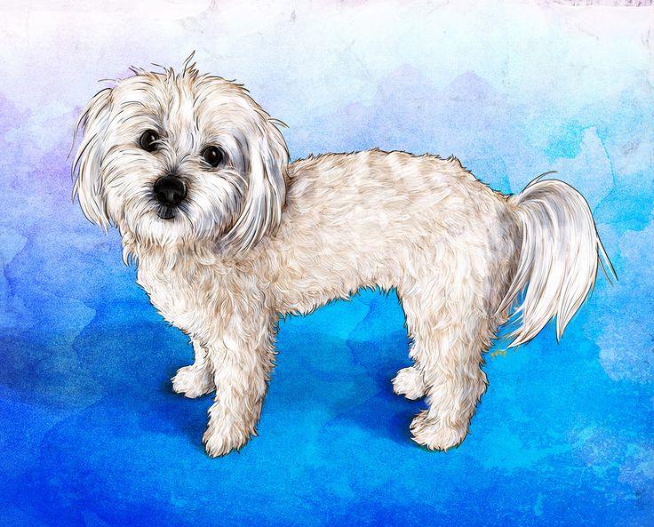 Commissioned portrait of Marla. Commission info & requests: https://www.etsy.com/au/listing/191989009/custom-pet-portrait-beautiful-digital?ref=shop_home_active_2