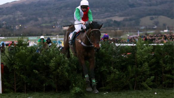 Big Shu trainer Peter Maher says his eight-year-old will prepare for the big Cheltenham and Punchestown Festivals next year in a similar fashion to his successful 2013 campaign. #horseracing #dafasports