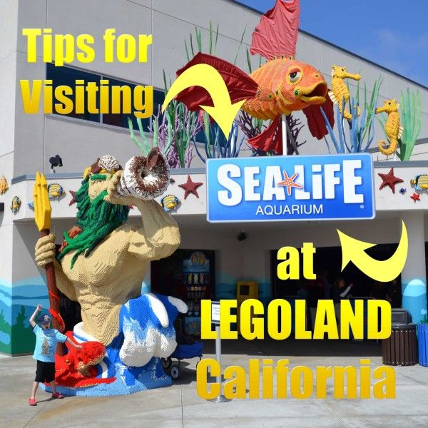Tips for Visiting SeaLife Aquarium at Legoland California via @Allison @ Tips for Family Trips
