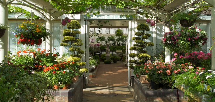 Garden Centre: Clifton Garden Centre & Plant Nursery, London