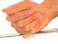 vcielkaisr-mojerecepty: Ako očistiť a posekať cesnak