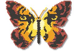 Tiger Eyes Butterfly, Sova Enterprises