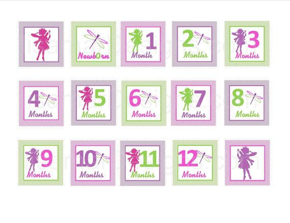 First Year Photo Mini Clips, First Year Banner, Fairy and DragonflyTheme, Garden Birthday Party, Any Theme on Etsy, $12.00