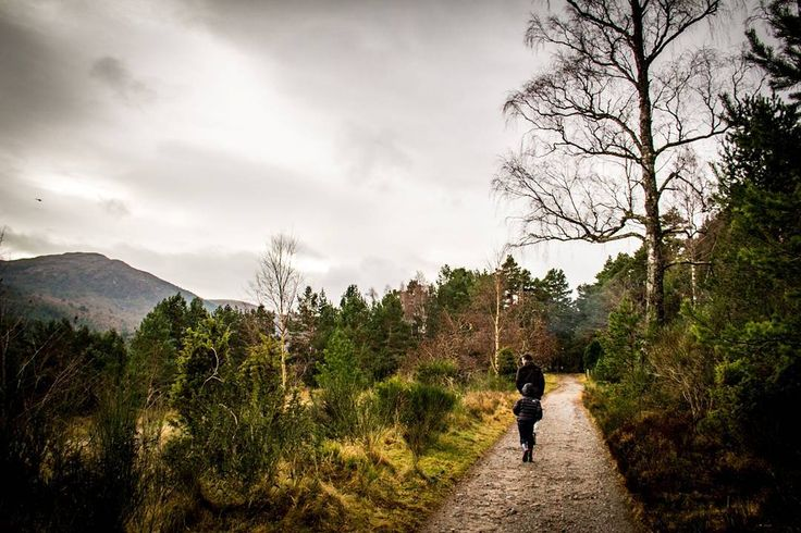 #lochaneilein #aviemore #thehighlands #scotland #scotlandinwinter #scottishhighlands #scottishadventures #highlands #loch #canon_photos #canonphotography #photography #photo #photographer #travels #travelphotography #travel #sharetravelpics #explore #discover #beautifulplaces #amazingview #amazingplaces #landscape #landscapephotography #familyadventures