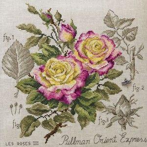 Aïda : Étude à la rose « Pullman Orient Express » (maxi-grille) à broder au point de croix