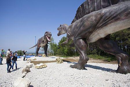 Dinopark, Rezi