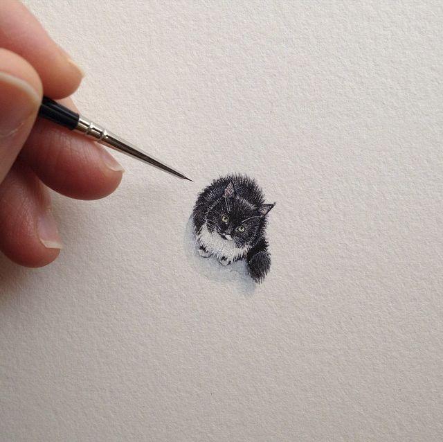 Amazing miniature cat