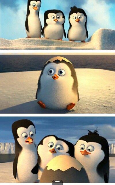 New penguins of madagascar movie