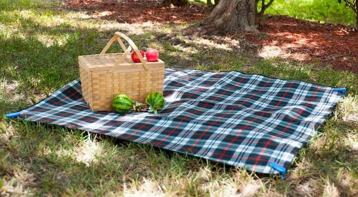 http://westernbusinessjournal.com/newsroom/pr/new-picnic-mat-made-available-for-prime-day/