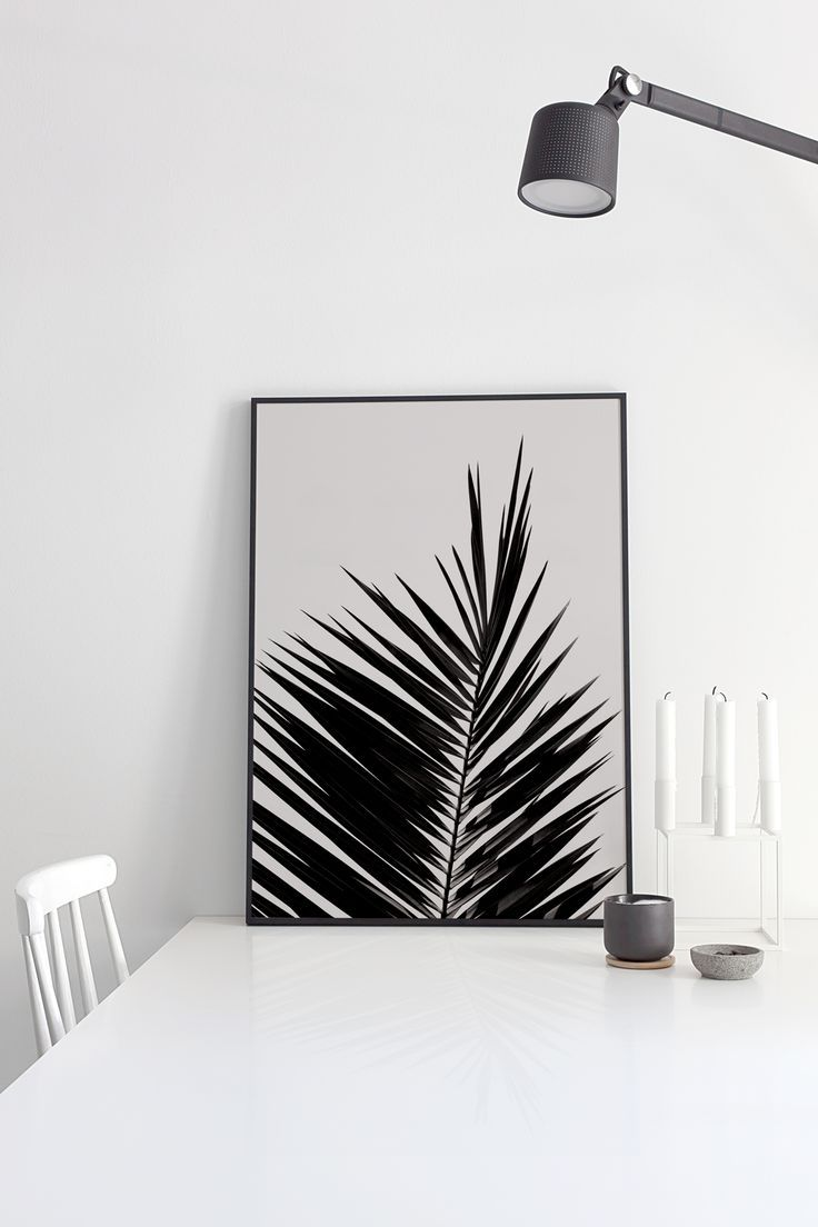 A picture of a big Palm leaf /