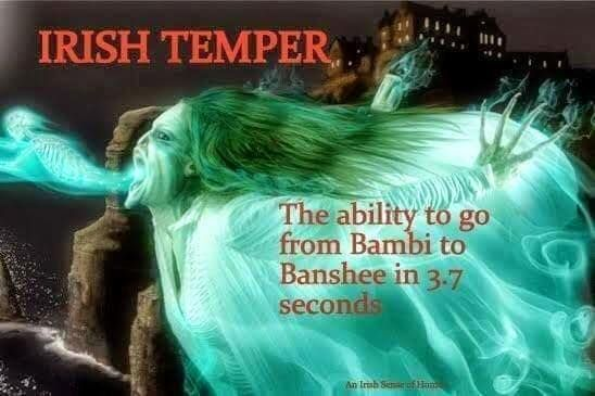 Irish temper: the ability to go from Bambi to banshee in 3.7 seconds. I has it.  from FB page Irish Sense of Humor