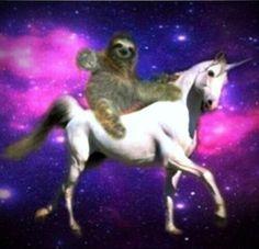 Creeper sloth riding unicorn..lol..
