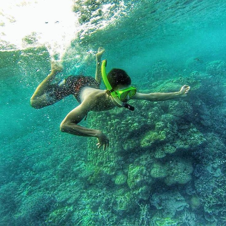 @anakdolan - Menyelam atau banyak orang bilang #Snorkling melihat keindahan dalam laut gugusan karang yang berwarna-warni menjadi tujuan kita saat berlibur di laut atau pantai. Disamping murah dan terjangkau kita bisa berfoto bagus di dalam air. Etsss! Tapi jangan lupa yang selalu di jaga kebersihan laut dan jangan buang sampah sembarangan ya.  #ayokekarimunjawa #visitjepara #jatenggayeng #pesonaindonesia #explorenusantara #dolanjepara