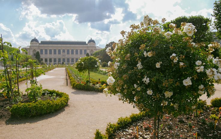Top 5 Parks and Gardens In Paris