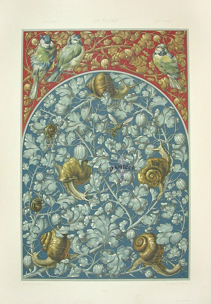 """Bleeding Heart, Snails"" from Anton Seder Die Pflanze Art Nouveau Prints 1890"