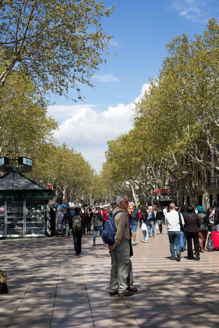 Barcelona Sehenswürdigkeiten - Top 10 Reisetipps Spanien