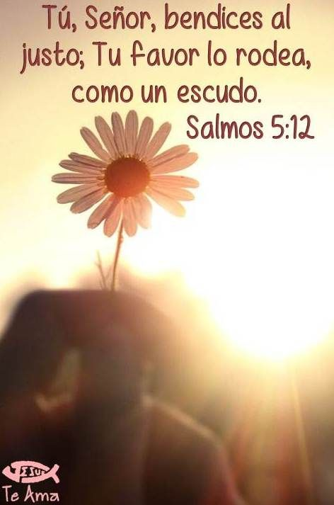 """❤ """"Salmos 05:12 (RV) Porque tú, Señor, ¿bendicen los justos; con buenos ojos lo rodearás de tu como con un escudo. (""""Isaías 33: 5-6) Porque el Señor es exaltado; porque Él mora en las alturas: llenó á Sión (Sus escogidos) con juicio y justicia. Y la sabiduría y el conocimiento reinarán en tus tiempos, y la fuerza de la salvación (de Ayuda, liberación, línea de vida, la preservación, la redención, salvador). Por el temor (reverencia, honor, respeto) de Jehová está su tesoro.{DM} ❤"""