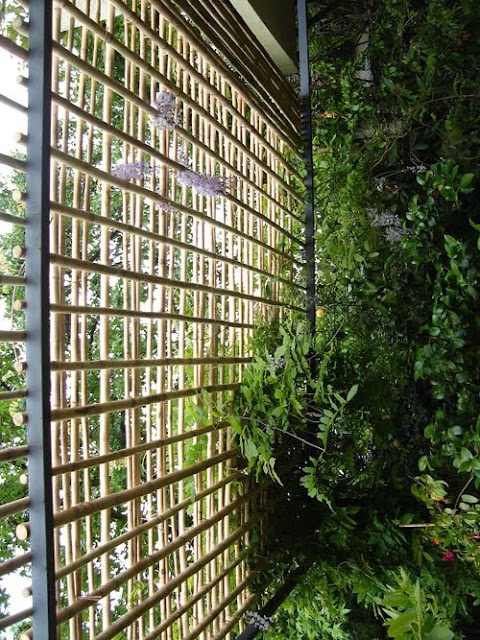 DIY bamboo garden dividers... Create a secret garden room