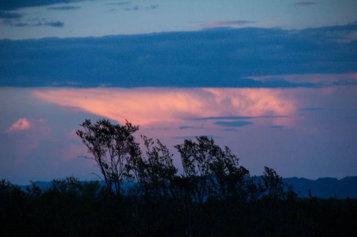 Atardecer saucillezco.    27 de junio 2015.  Saucillo Chihuahua.    #atardecer #sunset #nubes #clouds #saucillo