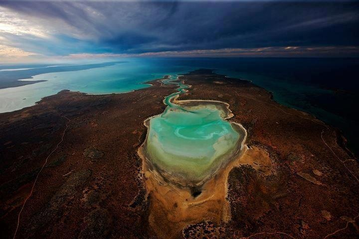 Sharks Bay Australia