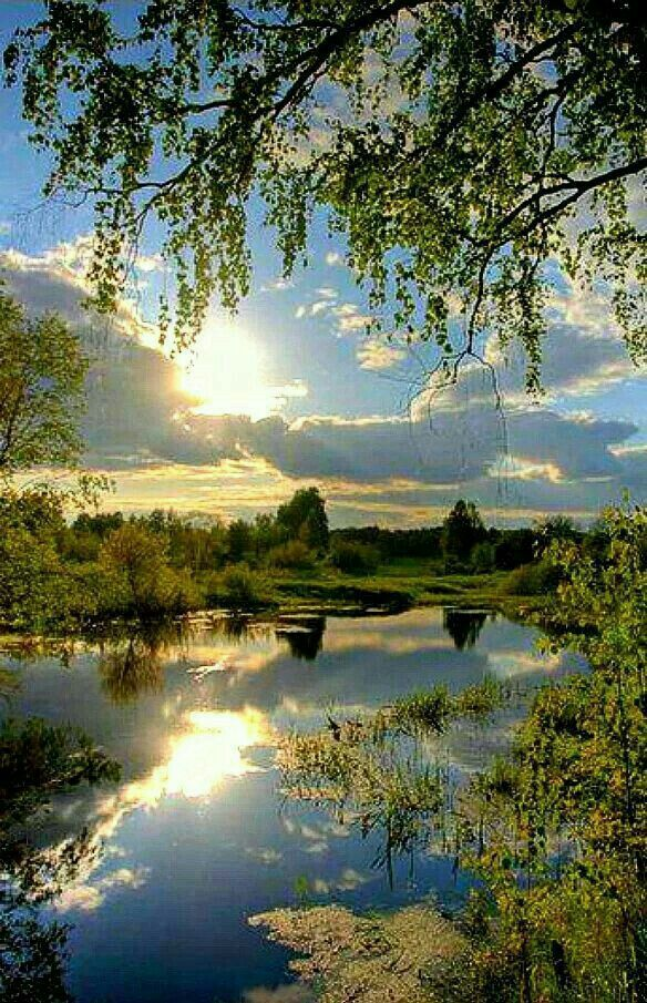 Картинки с добрым утром природа