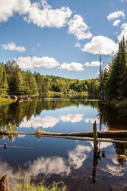 Algonquin Provincial Park . Ottawa Canada