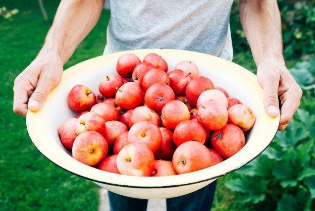 new fruit for rosh hashanah