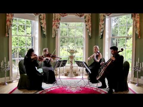 God, whoever I marry, may she please allow me to have this played as guests are taking their seats! 😂  Imperial March - John Williams (Star Wars) Wedding String Quartet - YouTube
