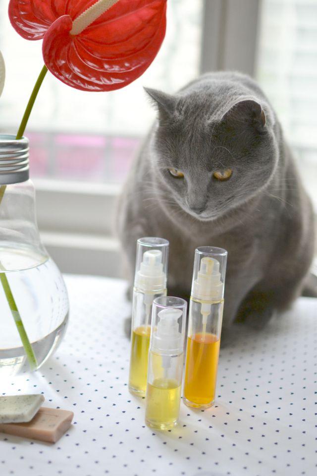 huiles végétales et soin de la peau / Huile de calophylle inophylle bio