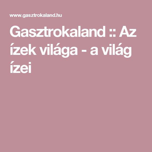 Gasztrokaland :: Az ízek világa - a világ ízei