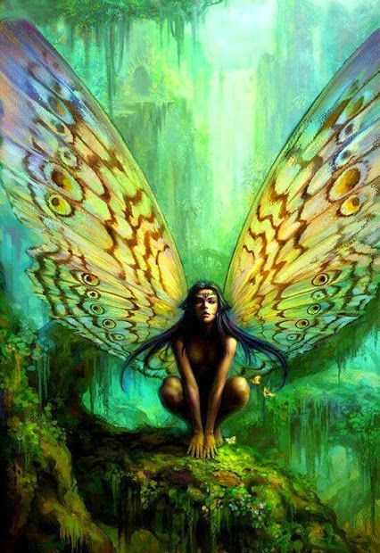 17 Best Images About Fairy Butterflies On Pinterest