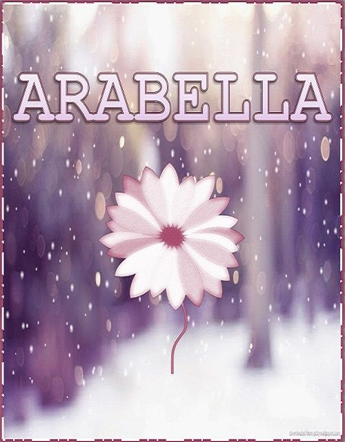 About the name Arabella The meaning of the name Arabella: Beautiful Lion The…