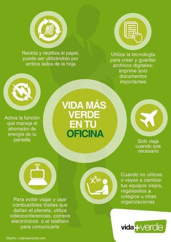 Vida más verde en tu oficina